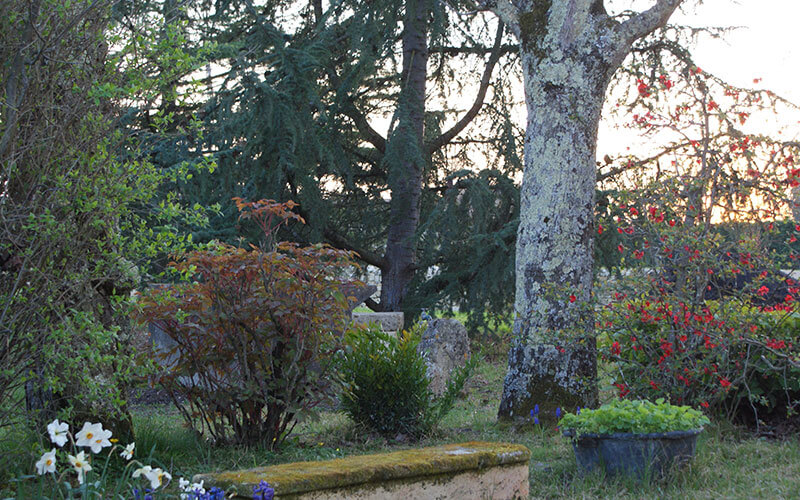 Jardin-800×500-01